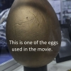Golden egg used in the movie